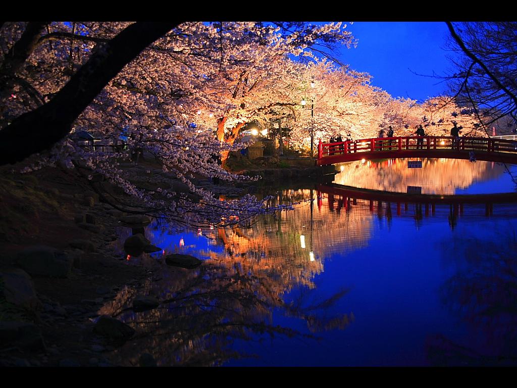 http://k-kabegami.com/garyuyozakura/4.jpg