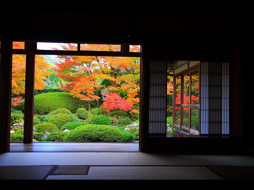 書院と書院窓から見る紅葉