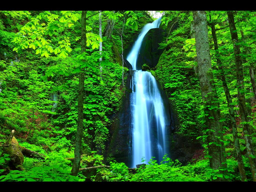 雲井の滝 左クリックで奥入瀬渓流新緑へ右クリック... 壁紙サイズ Tweet 雲井の滝