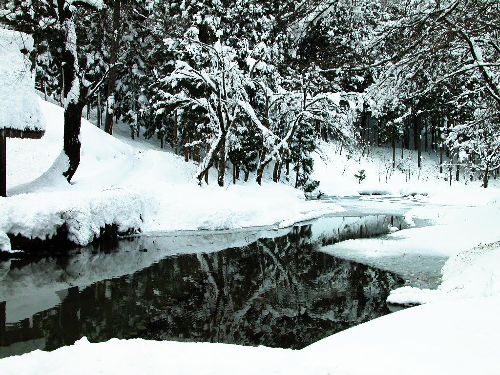 雪景色を映す池