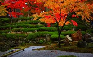 永源寺庭園の紅葉1280×800